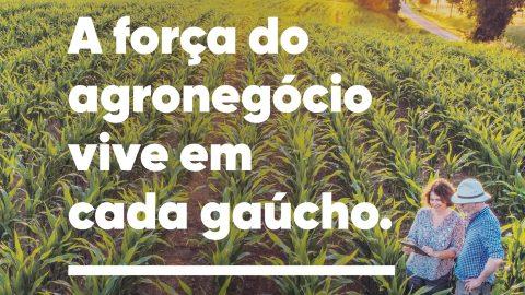 Agro Gaucho